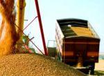Перевезення зернових по Україні
