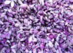 Элитные семена сортового чеснока
