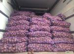 Картофель оптом не дорого